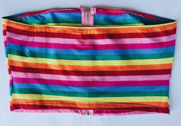 Rainbow Crop Top